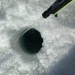 能取湖で、コマイ、釣り!30cm超サイズの氷上釣りを調べてみた!(50代趣味探し)